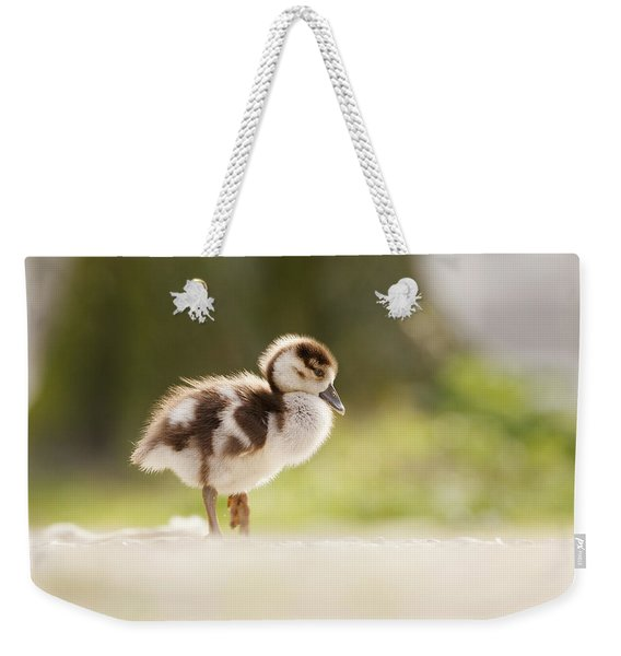 All Alone - Egyptean Gosling And A Tree Weekender Tote Bag