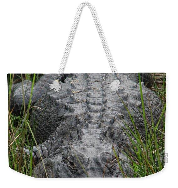 Alligator 0089 Weekender Tote Bag