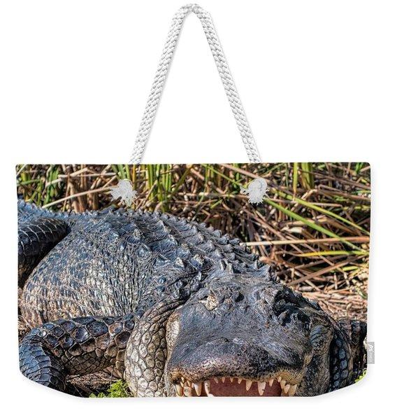 Alligator -34 Weekender Tote Bag