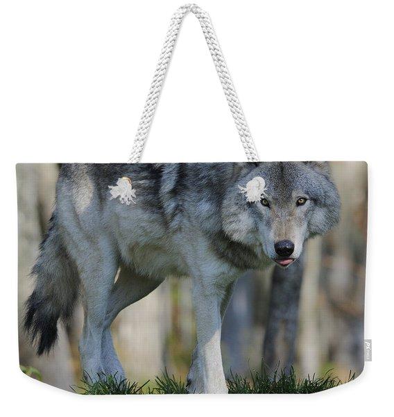 Alpha... Weekender Tote Bag
