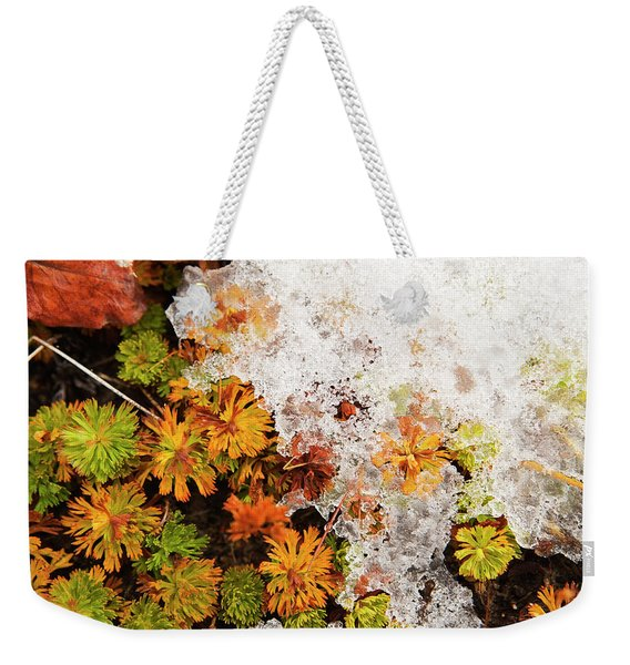 Alpine Groundcover At The 6000 Foot Weekender Tote Bag