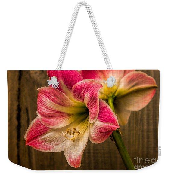 Amaryllis Blooms Weekender Tote Bag