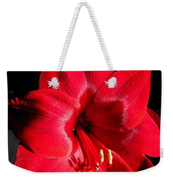 Amaryllis Named Black Pearl Weekender Tote Bag