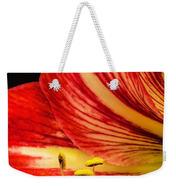 Amaryllis Pollen Weekender Tote Bag