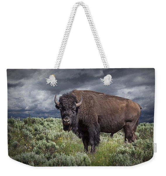 American Buffalo Or Bison In Yellowstone Weekender Tote Bag