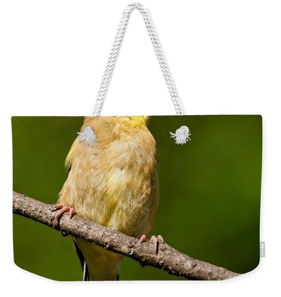 American Goldfinch Singing Weekender Tote Bag