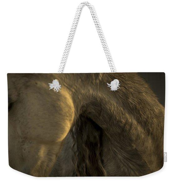 Americano 5 Weekender Tote Bag
