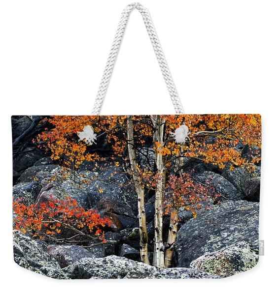 Among Boulders Weekender Tote Bag