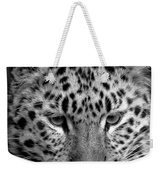 Amur Leopard In Black And White Weekender Tote Bag