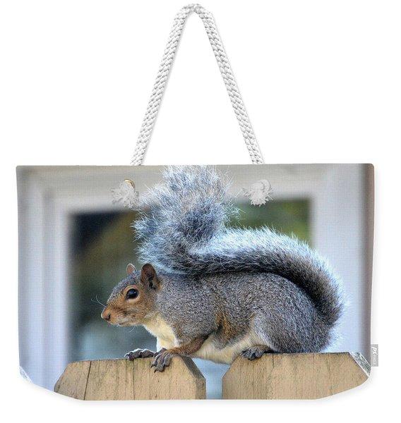 American Squirrel Weekender Tote Bag