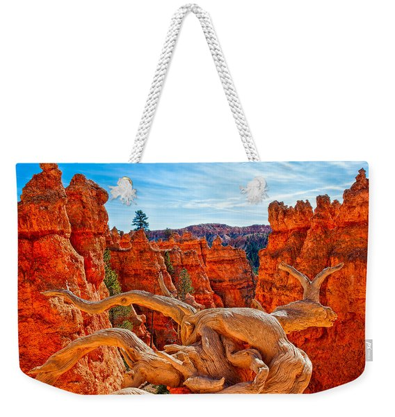 An Object For Imagination Weekender Tote Bag