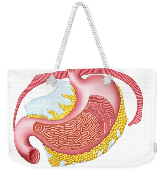 Anatomy Of The Human Stomach Weekender Tote Bag