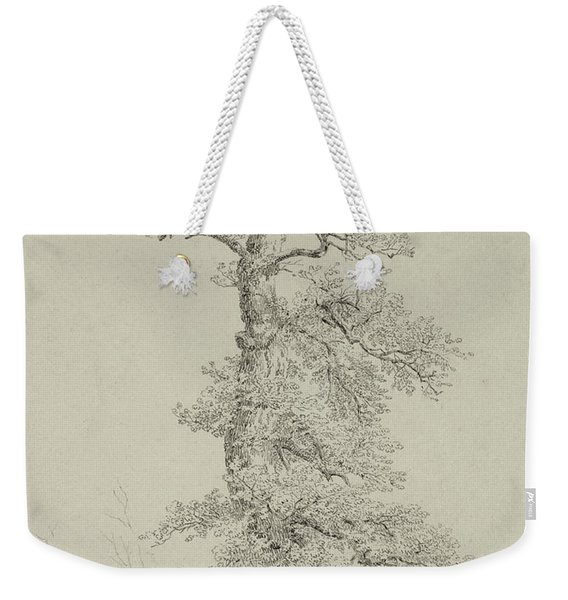 Ancient Oak Tree With A Storks Nest Weekender Tote Bag