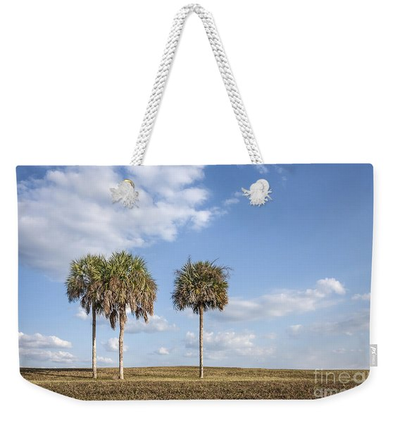 And Then There Were Three... Weekender Tote Bag