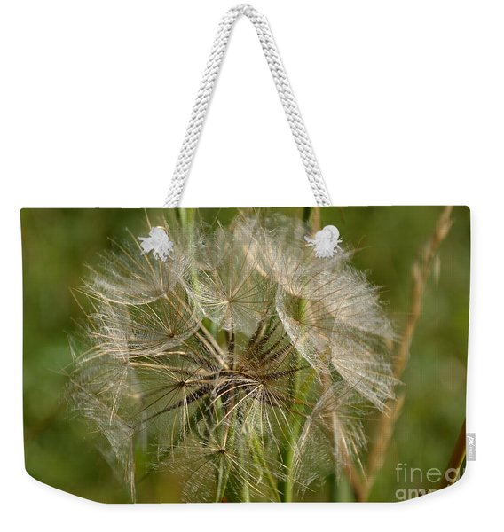 Weekender Tote Bag featuring the photograph Angel Petals by Scott Lyons
