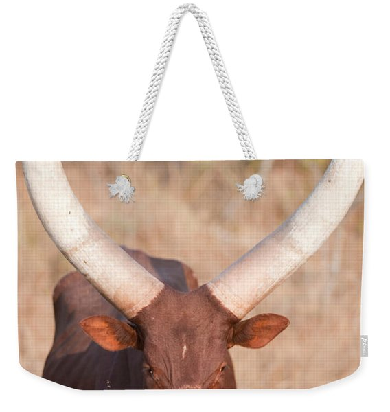 Ankole-watusi Cattle Standing Weekender Tote Bag