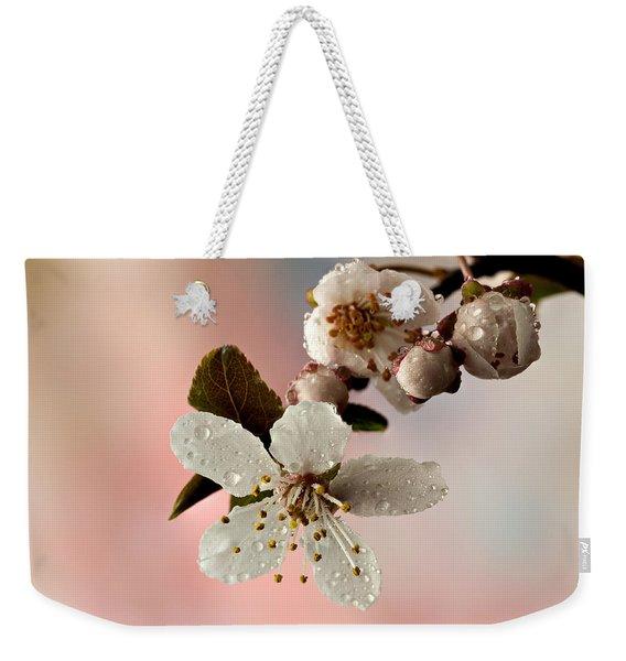 Announcing Spring Weekender Tote Bag
