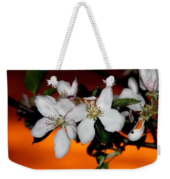 Apple Blossom Sunrise I Weekender Tote Bag