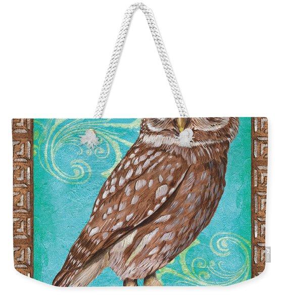 Aqua Barn Owl Weekender Tote Bag
