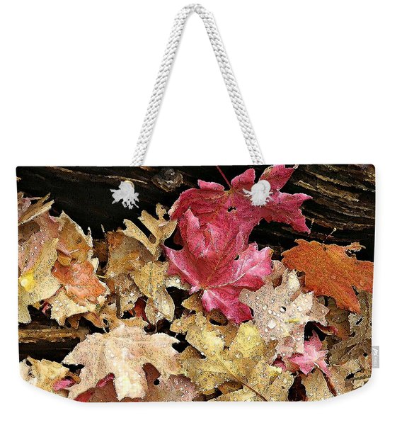Arizona Fall Colors Weekender Tote Bag