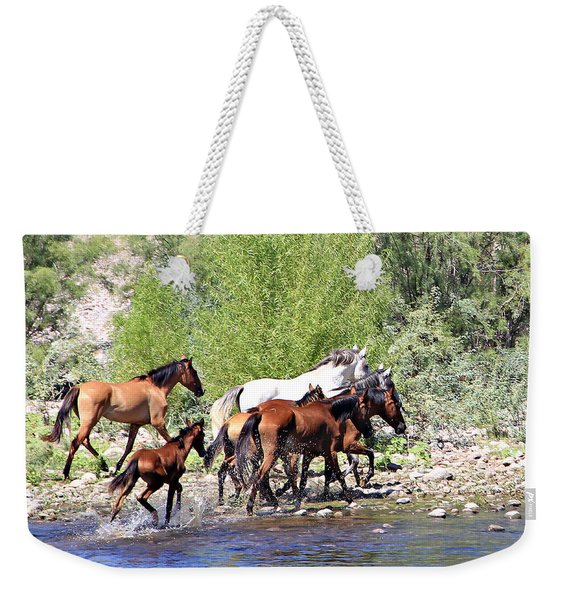Arizona Wild Horse Family Weekender Tote Bag