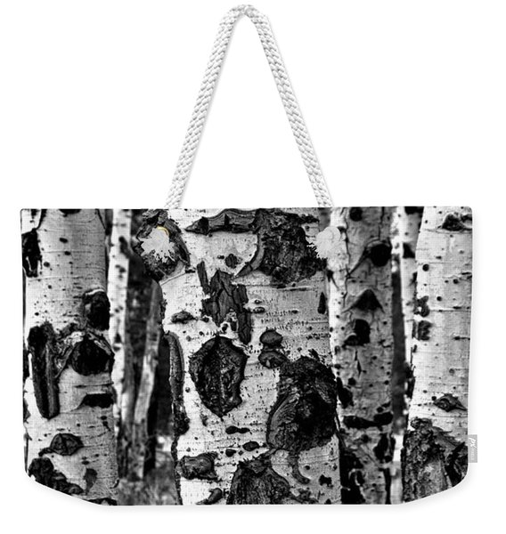 Weekender Tote Bag featuring the photograph Aspen Art by Mae Wertz