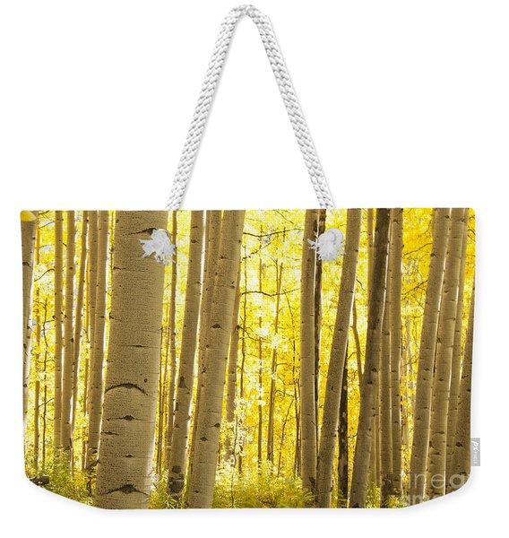 Aspen Grove In Autumn Weekender Tote Bag