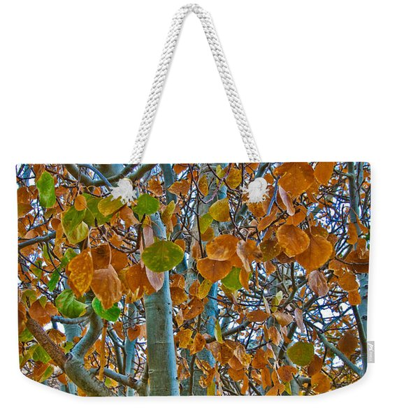 Weekender Tote Bag featuring the photograph Aspen Leaves In The Fall by Mae Wertz
