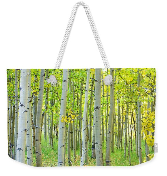 Aspen Tree Forest Autumn Time  Weekender Tote Bag