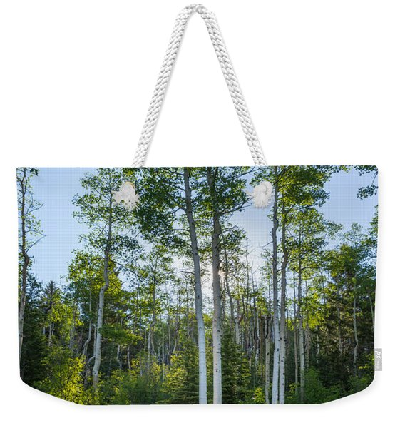 Aspens At Sunrise 1 - Santa Fe New Mexico Weekender Tote Bag