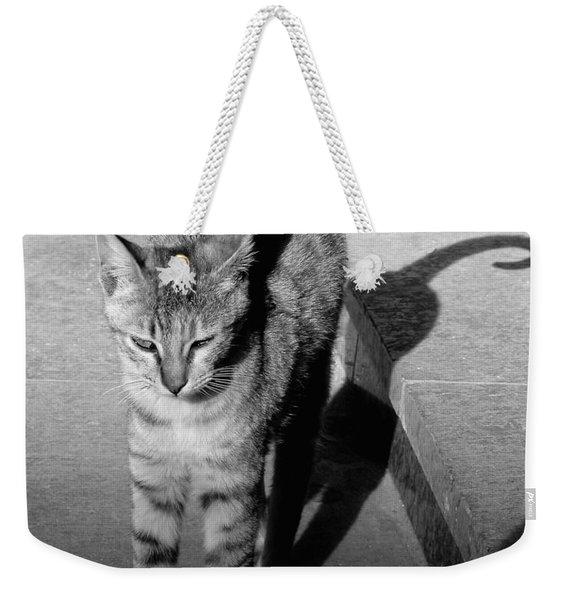 Aswan Cat Weekender Tote Bag
