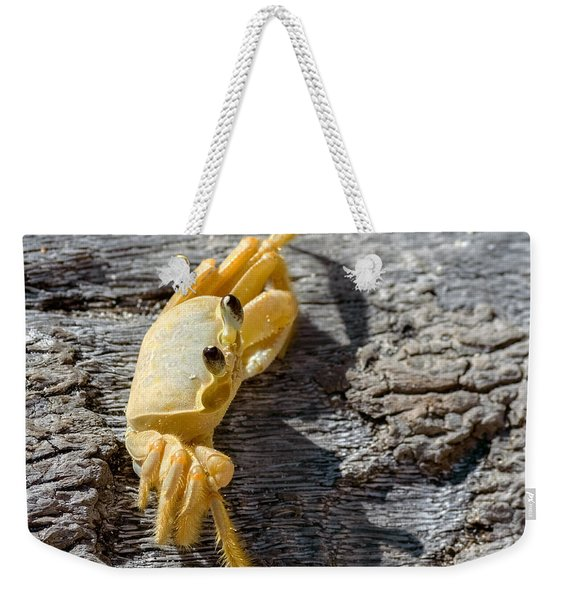 Weekender Tote Bag featuring the photograph Attitude by Garvin Hunter