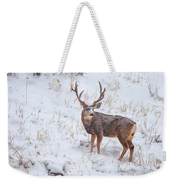 Atypical Buck Weekender Tote Bag
