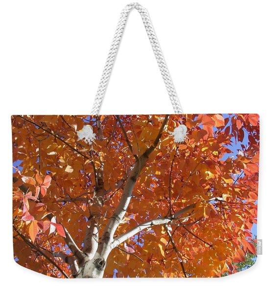 Autumn Aspen Weekender Tote Bag