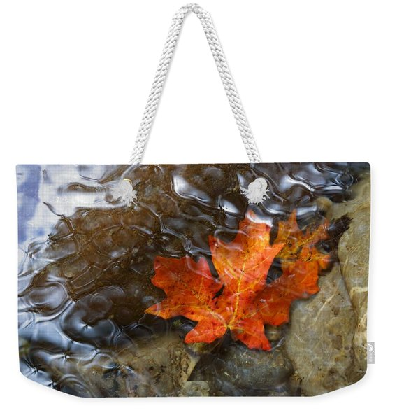 Autumn Down Under Weekender Tote Bag