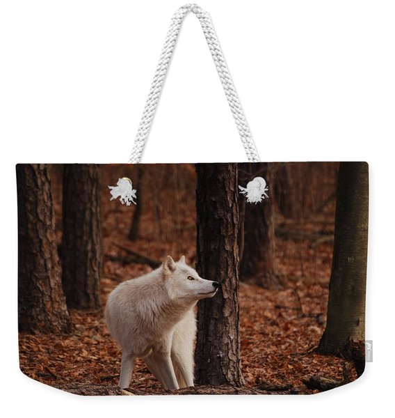 Autumn Gaze Weekender Tote Bag
