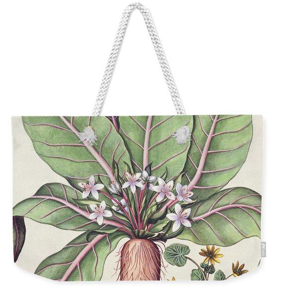 Autumn Mandrake Weekender Tote Bag