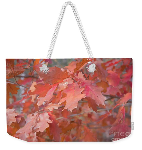 Autumn Paintbrush Weekender Tote Bag