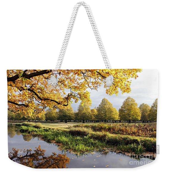 Autumn Trees Weekender Tote Bag