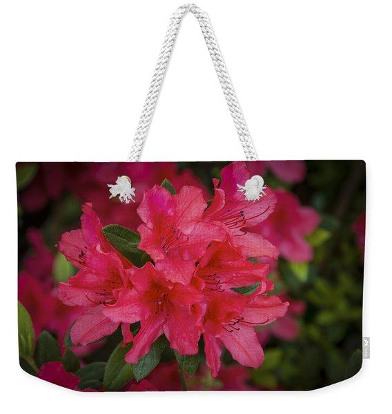 Azaleas 1 Weekender Tote Bag