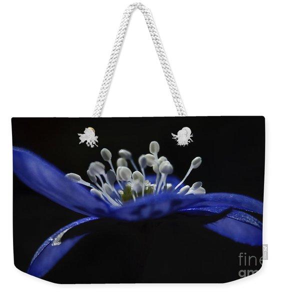 Baby Blues.. Weekender Tote Bag