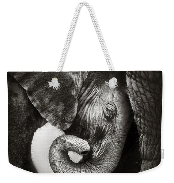 Baby Elephant Seeking Comfort Weekender Tote Bag