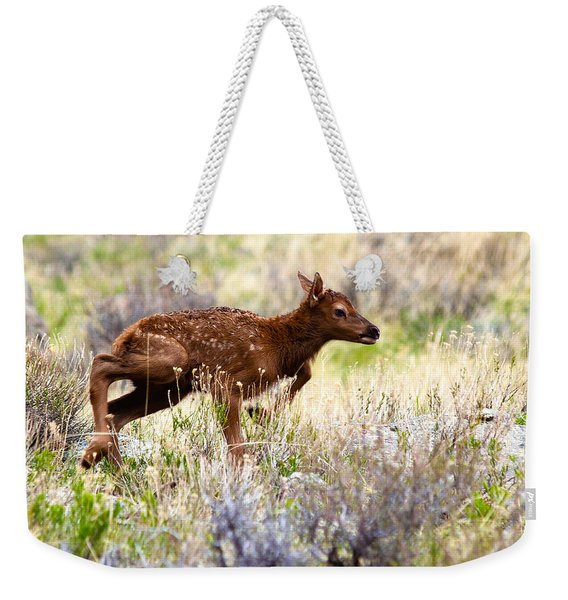 Baby Elk Weekender Tote Bag