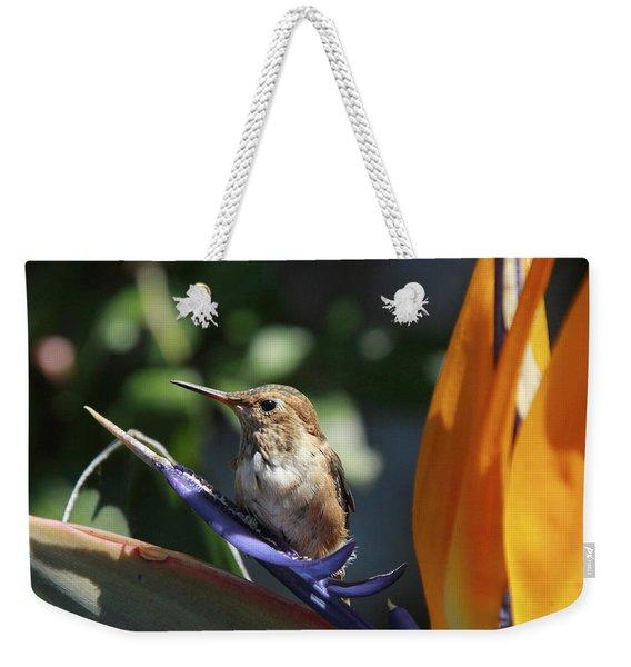 Baby Hummingbird On Flower Weekender Tote Bag