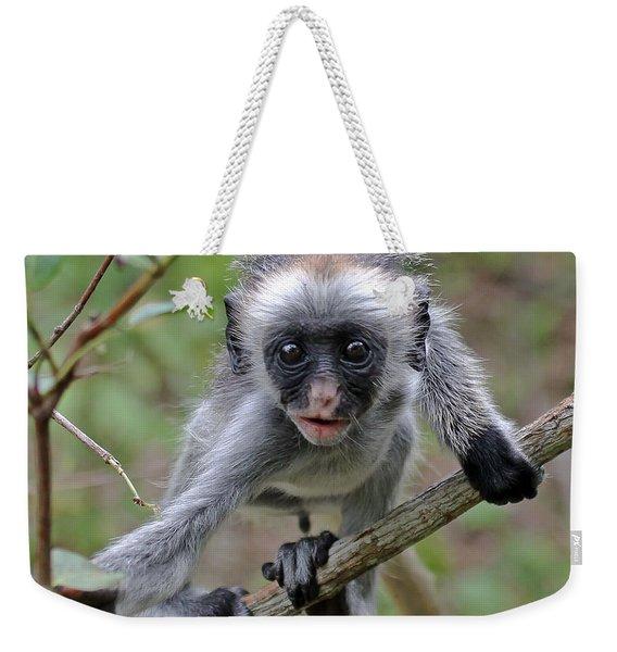 Baby Red Colobus Monkey Weekender Tote Bag