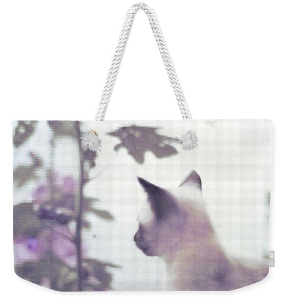 Baby Siamese Kitten Weekender Tote Bag