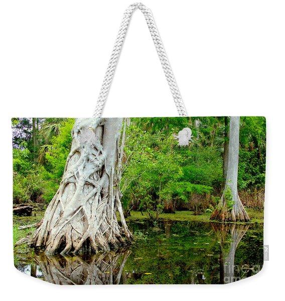 Backcountry Weekender Tote Bag