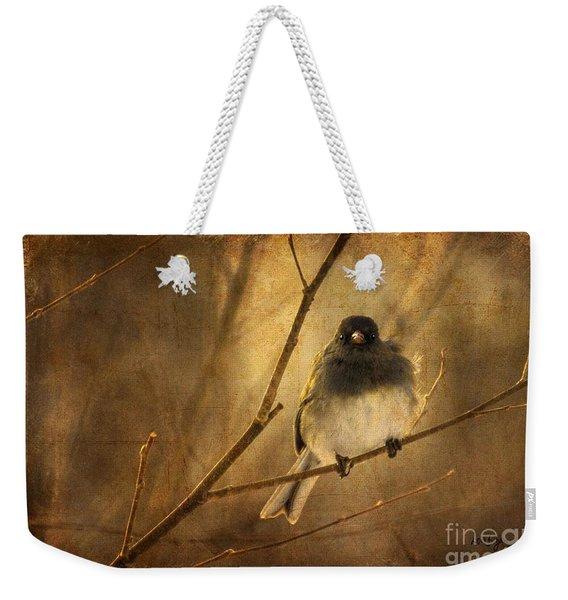 Backlit Birdie Being Buffeted  Weekender Tote Bag