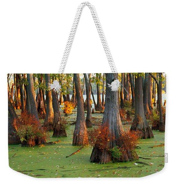 Bald Cypress Trees Taxodium Disitchum Weekender Tote Bag