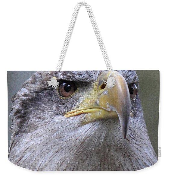 Bald Eagle - Juvenile Weekender Tote Bag